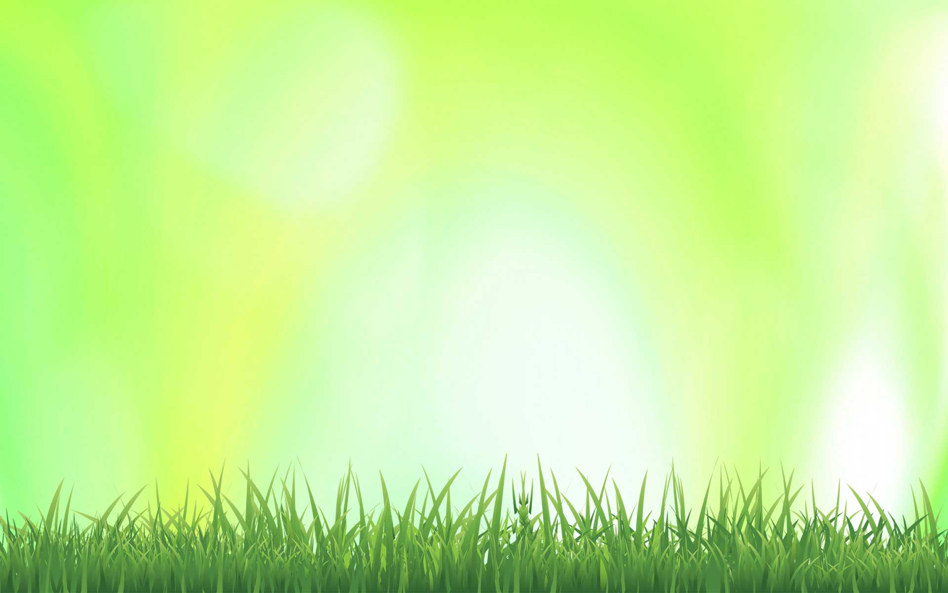 Summer Grass Background